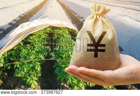 Farmer Holding A Money Bag On The Background Of Potato Plantations. The Development Of Agriculture I
