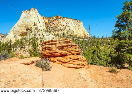 Zion Canyon, USA. The magnificent huge multi-kilometer canyon Zion, dug by the Virginia River in the red sandstone of Navajo. The concept of automotive, active and photo tourism