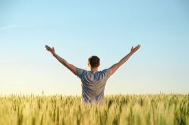 Adult Man Stands On A Field In Tall Grass, Arms Spread Out To The Sides During Sunrise. Digital Deto