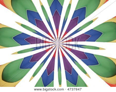 Multi Color Feather Abstract