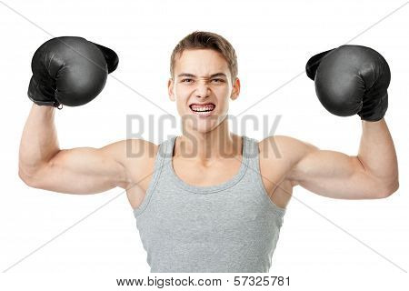 Angry Boxer Showing Biceps