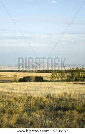 Landscape With Grass, Meadow, Trees, Hills, Mountain And Cloudy