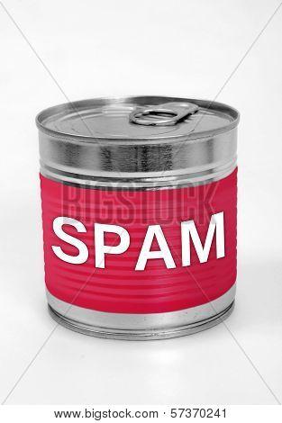 Spam Food