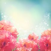 Shining flowers roses (peonies) background.  Romantic vector floral summer season beautiful card poster