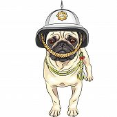serious dog breed pug in the British helmet poster