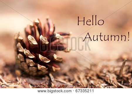 Autumn Background With Hello Autumn