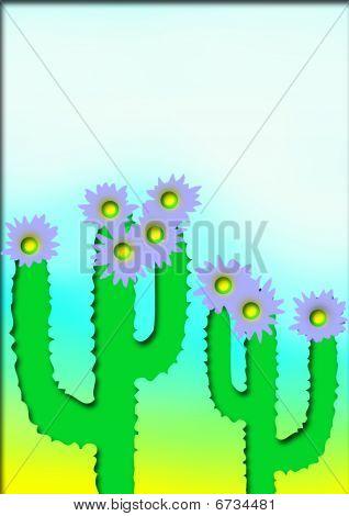 Ornamental cacti