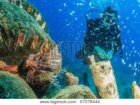 SCUBA Diver and Lionfish