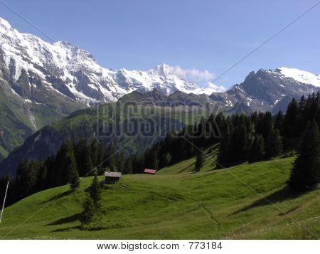 Rual Murren Landscape