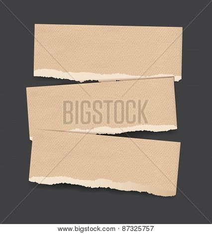Torn Paper Banners