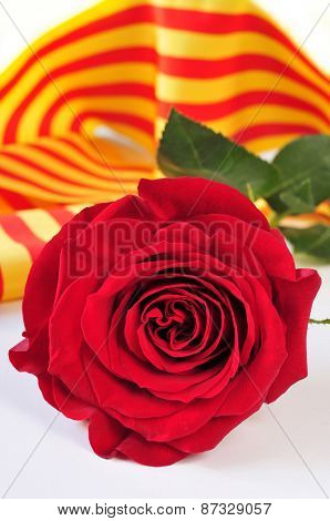 a red rose and the catalan flag on a book for Sant Jordi, the Saint Georges Day, when it is tradition to give red roses and books in Catalonia, Spain