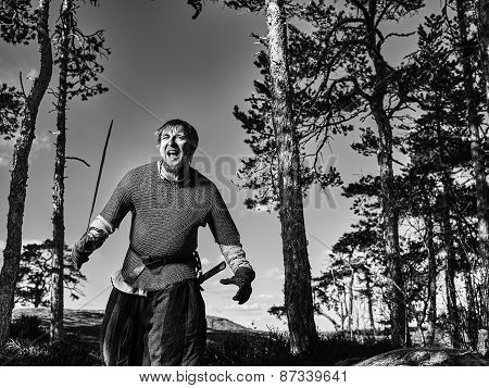 Medieval viking warrior wearing chainmail and he has the sword north nature on background black and white image poster