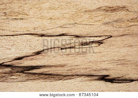 Spalted maple texture. with unique and distinctive black lines. Sought after wood for guitar making.