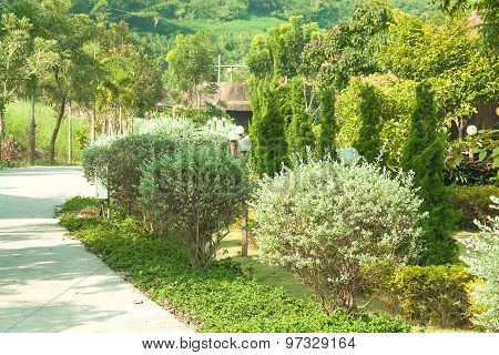 In The Garden Walk
