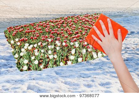 Hand Deletes Snow Surface By Orange Cloth