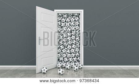 door with Soccer Ball