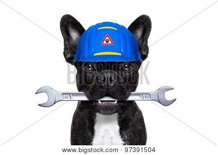 Handyman  Wrench  Dog