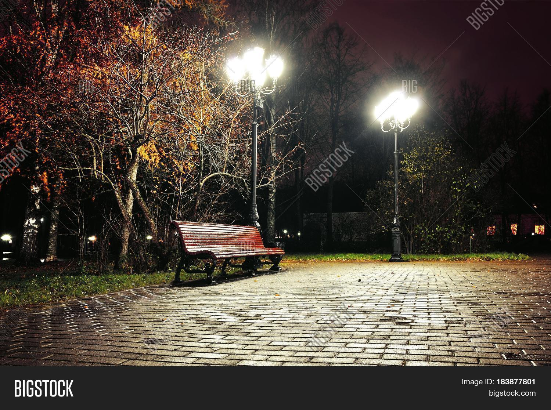 Autumn Night Park Image Photo Free Trial Bigstock