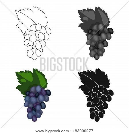 Bunch of grapes icon in cartoon style isolated on white background. Greece symbol vector illustration.