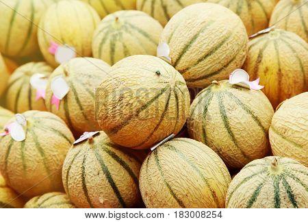 Closeup on charentais melons at farmer's market