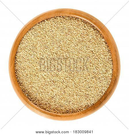 Amaranth grain in wooden bowl. Amaranthus, pseudocereal and staple food of the Aztec, banned by the conquistadores. Sold in health food shops. Isolated macro food photo close up from above over white.