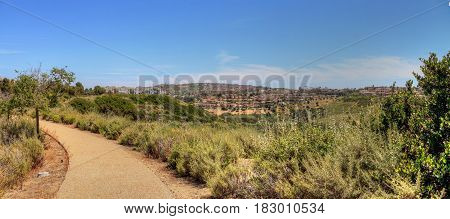 Green plants and dirt path of Bobcat Hiking Trail in Newport Beach California in spring