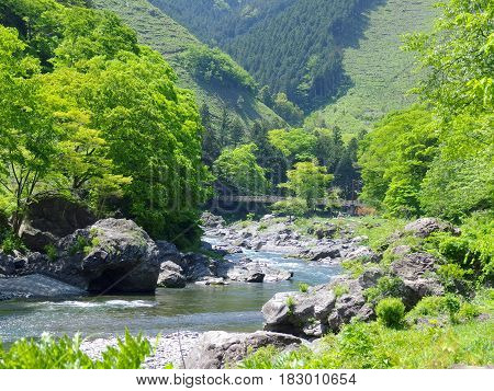 Amazing natural view of mountain and river surrounded by green forest at TAMAKAWA TOKYO JAPAN