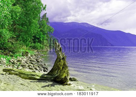 Siberia. Lake Teletskoe. View to the south and the left bank