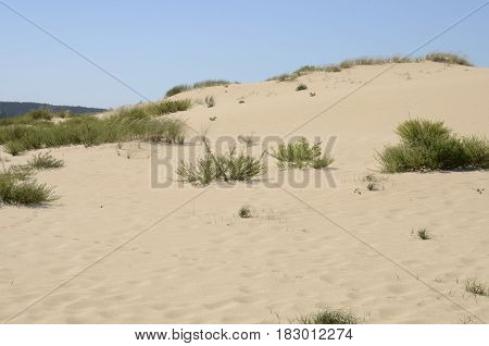 The Dunes of Corrubedo a Natural Park in Galicia Spain