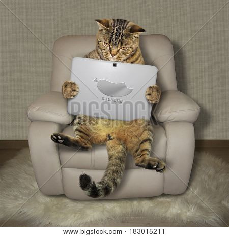 The big cat with a tablet is sitting on a armchair. There is a image of piece of sausage on this gadget.