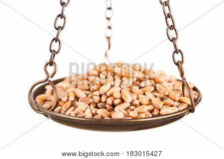 Wheat Grain In Old Balance Scale