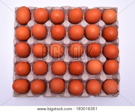 eggs in tray above view on white background