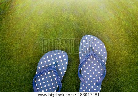 Blue Flip Flops In White Polka Dots On The Grass Meadow