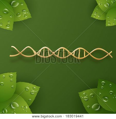 Organic skin care cosmetics vector background with golden dna strand and green leafs with transparent dew drops can be used for medical or science concepts. EPS10