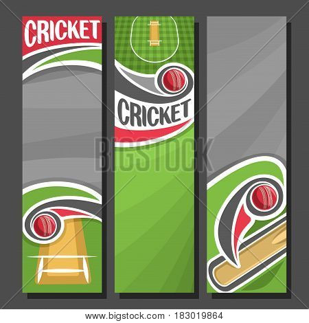 Vector Vertical Banners for Cricket game: 3 cartoon layouts for title text on cricket theme, bat hitting red ball above checkered field with pitch, vertical banner for inscriptions on grey background.