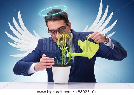 Businessman in angel investor concept growing future profits