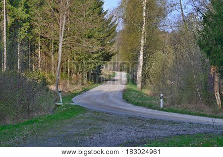 view of forest road south Bohemia Czech Republic