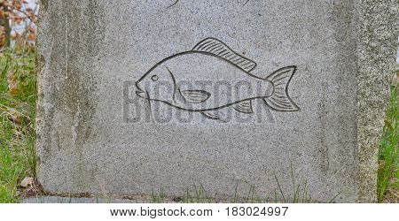 Picture of fish carved in stone southern Bohemia Czech Republic