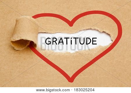 Handwritten word Gratitude appearing behind ripped brown paper.