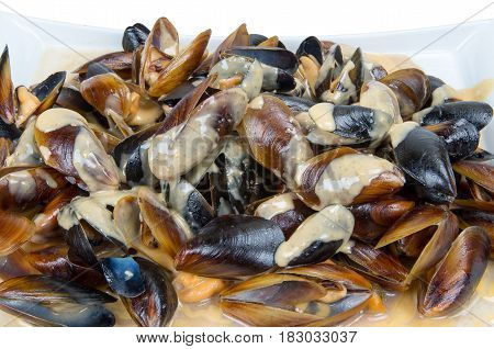 Sea gift. Portion of cooked mussels with white sauce.