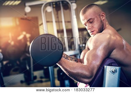 Muscular man working out with dumbbells. Arm training and weight lifting in a gym. Sport and bodybuilding.
