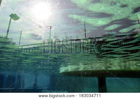 Aquarium Landscape: Blue water and sky reflection in aquarium