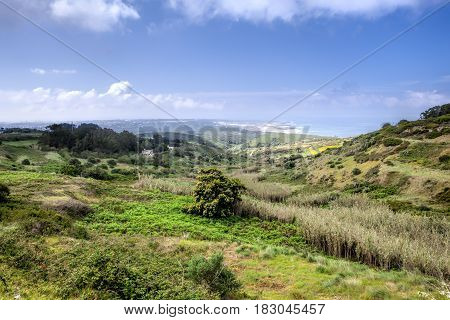 A wild lanscape of green grass and cloudy sky