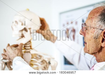 old doctor with white coat teaching with a skeleton