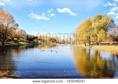 Beautiful autumn park. Autumn in Minsk. Autumn trees and leaves. Autumn Landscape.Park in Autumn. Forest in Autumn.