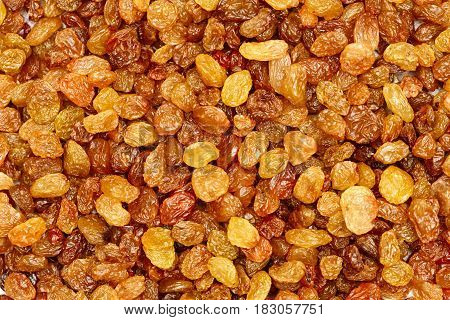 raisins background. Dry yellow and orange grapes.
