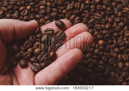 Close-up of fingers showing roasted coffee bean with blurred other coffee beans scattered behind. Shallow depth of field focused on coffee bean. Concept of individual approach to quality control.
