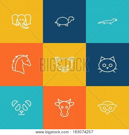 Set Of 9 Beast Outline Icons Set.Collection Of Turtle, Lizard, Elephant And Other Elements.