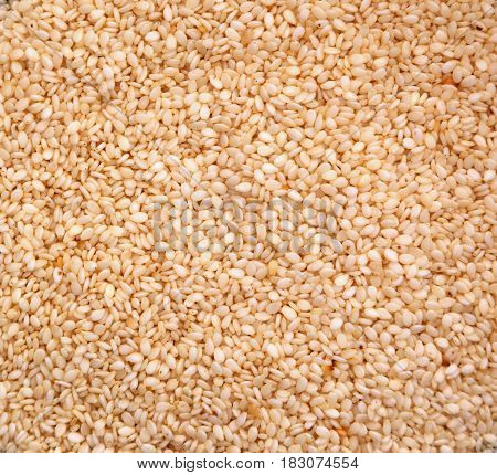 Nutritious white sesame seeds which can be used as a background. Space for text.