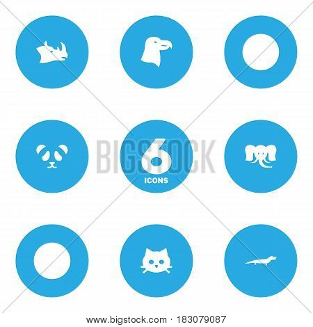 Set Of 6 Beast Icons Set.Collection Of Aquila, Gecko, Rhinoceros And Other Elements.